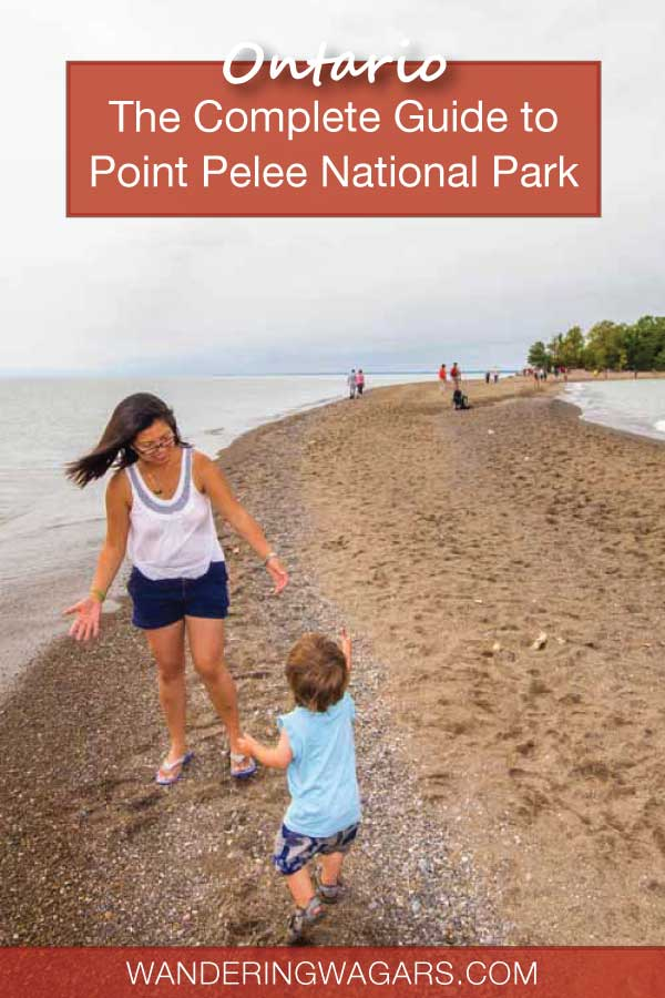 Complete guide to Point Pelee National Park