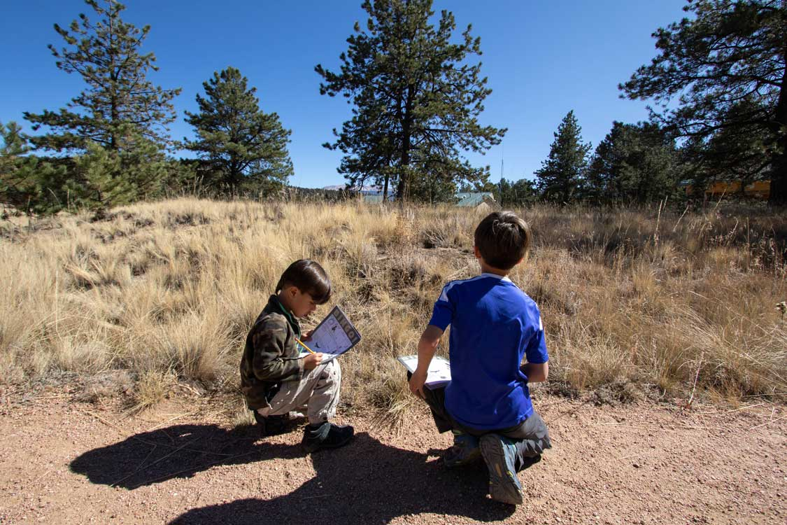 Florissant Fossil Beds with Kids
