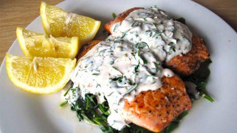 Norwegian Salmon in Dill Sauce Recipe