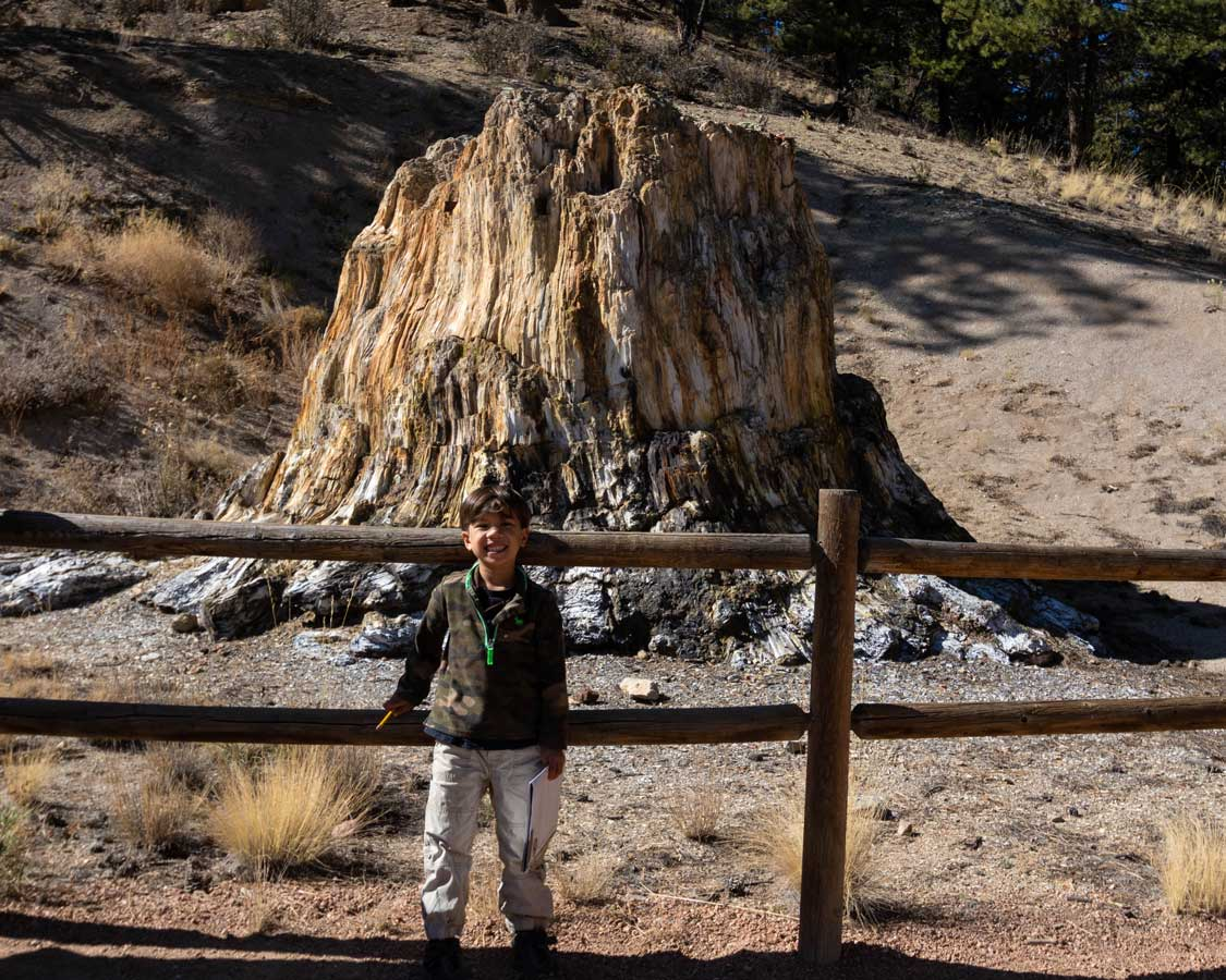 Things to do in Florissant Fossil Beds Colorado