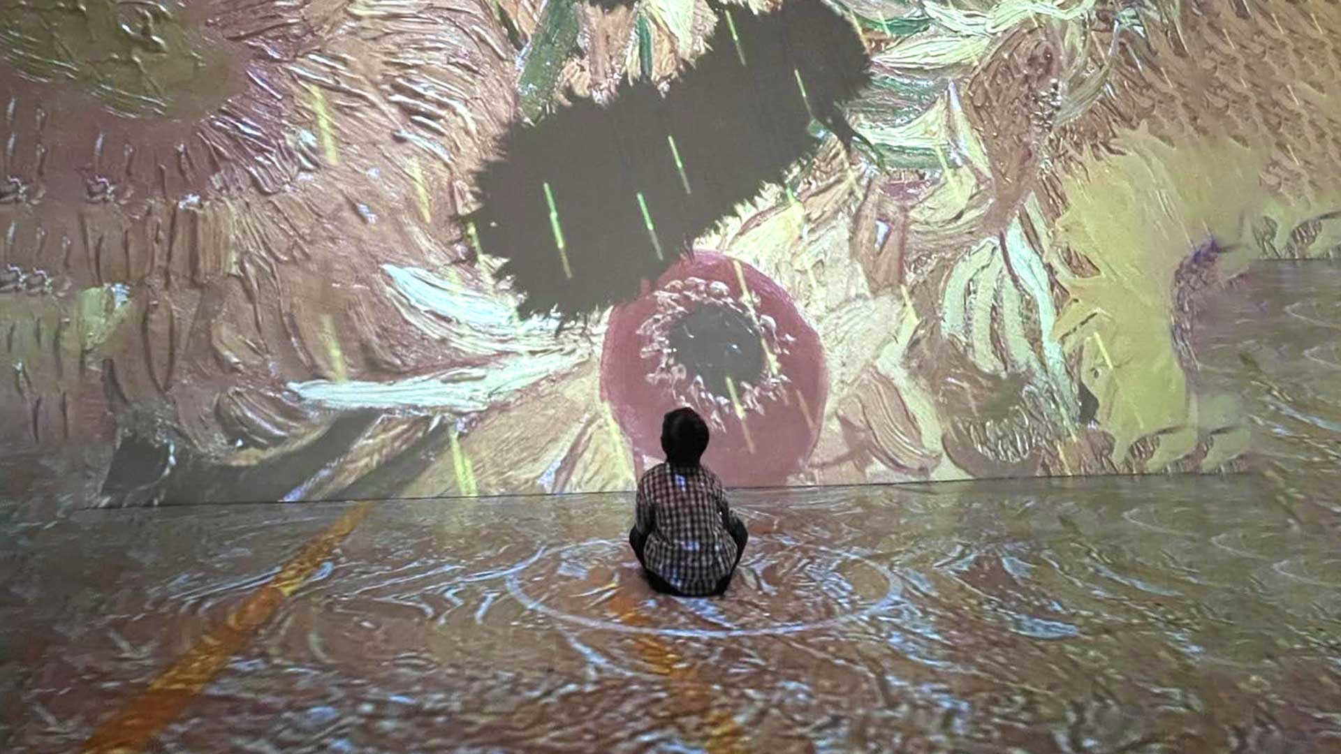 D takes in the Van Gogh light exhibit in Toronto