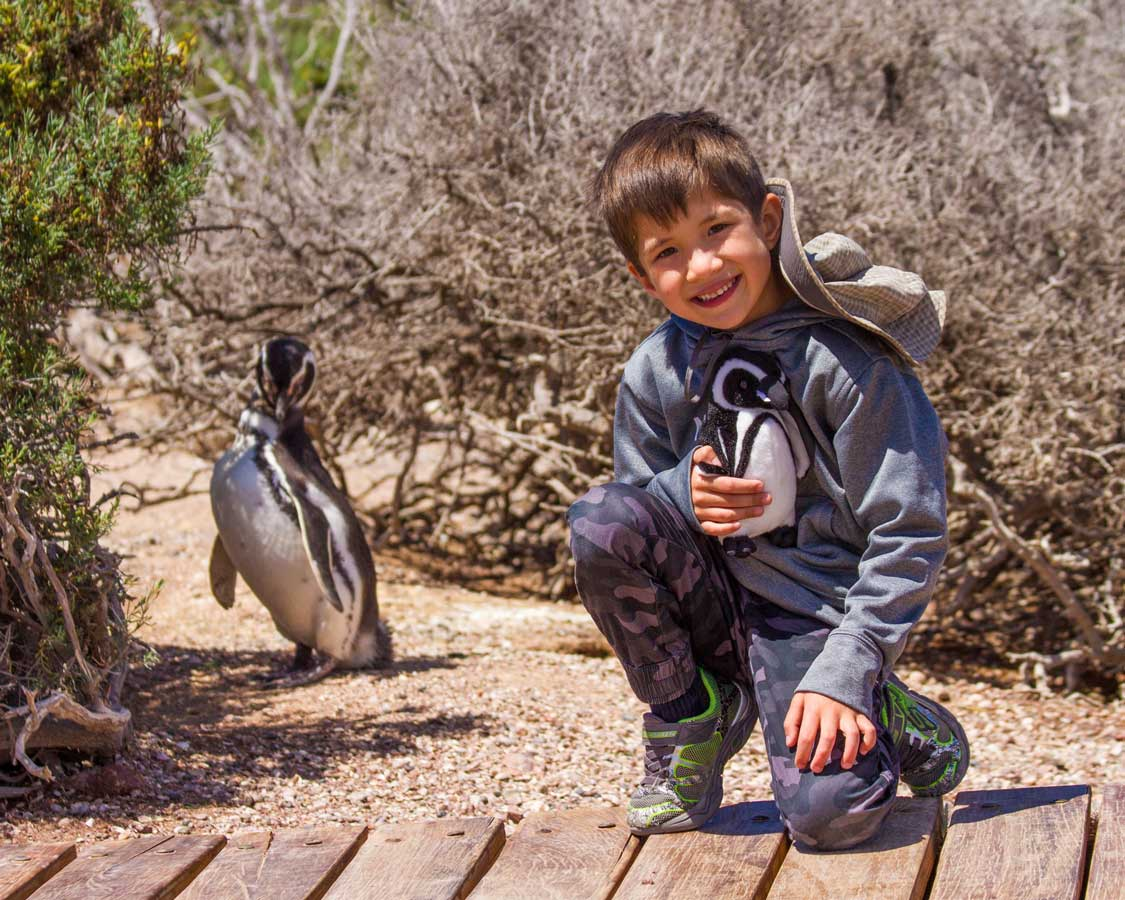 Boy holding a stuffed penguin standing next to a penguin