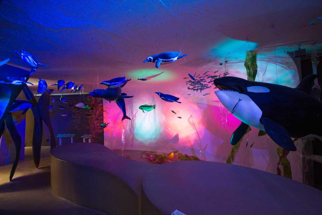 Punta Tombo Penguin Interpretation Centre