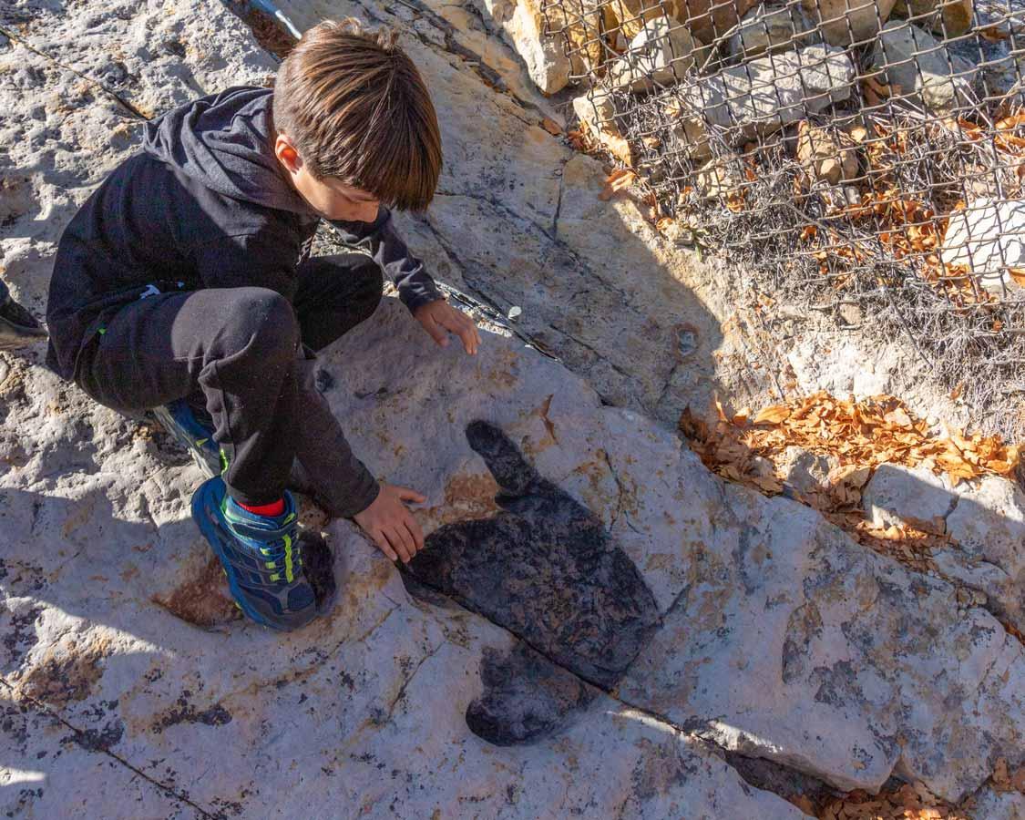 A boy places his hand next to a dinosaur footpring at Dinosaur Ridge near Denver Colorado