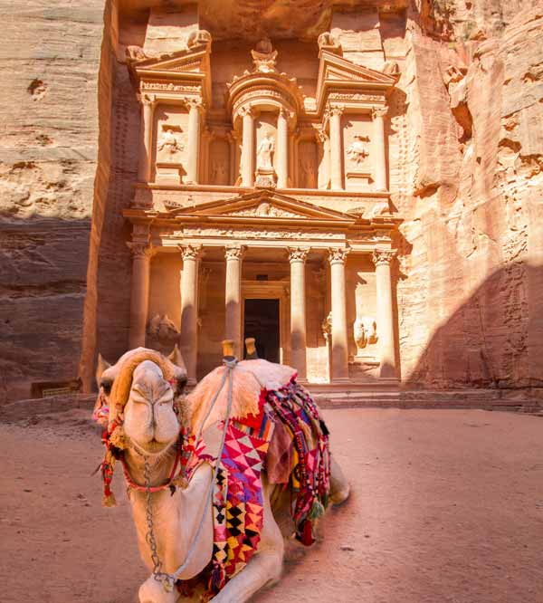 A camel lays in front of the Petra Monastery in Jordan things to do