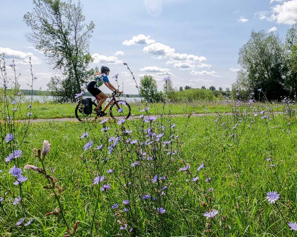 Bike trails in Leamington, Ontario